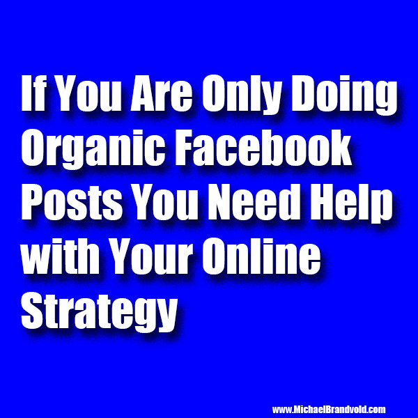 If You Are Only Doing Organic Facebook Posts You Need Help with Your Online Strategy
