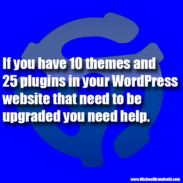 If you have 10 themes and 25 plugins in your WordPress website that need to be upgraded you need help.